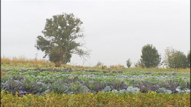 """""""Restaurons la terre"""": un projet des Compagnons de la terre et de l'ONG Autre terre"""