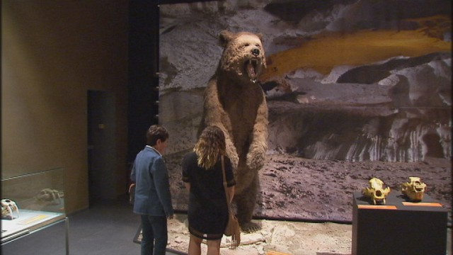 Préhistomuseum : Les géants de l'âge de glace jusqu'au 19 avril