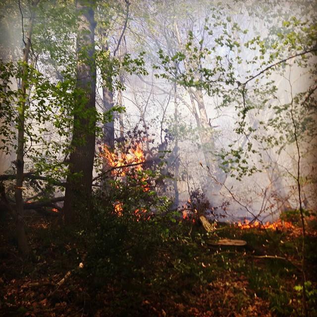 Photos et vidéos spectaculaires de l'incendie au Sart Tilman