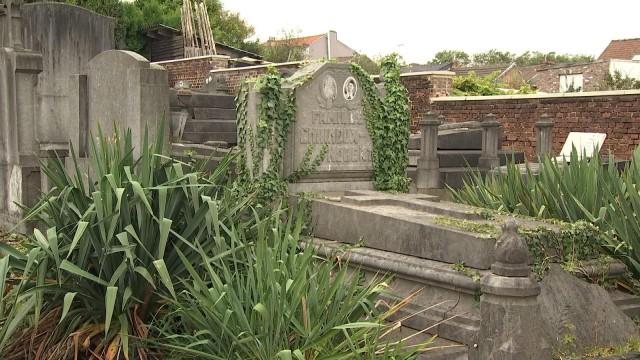 Le MR liégeois veut des cimetières mieux entretenus
