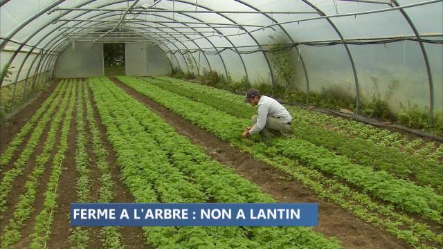 Extension de Lantin : une ferme bio en péril