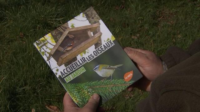 Comment accueillir les oiseaux au jardin?