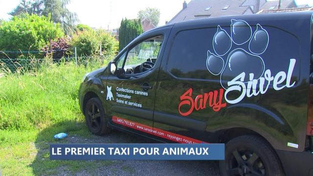 Le premier taxi pour animaux en province de Liège