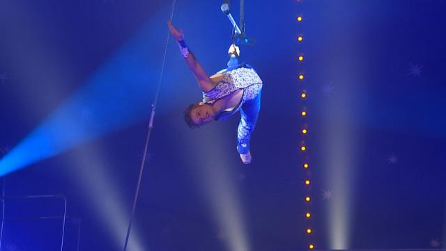 European Circus Festival : entre tradition et sensations