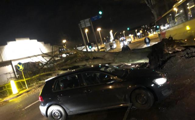 Le Boulevard de l'Ourthe à l'arrêt à cause d'un arbre