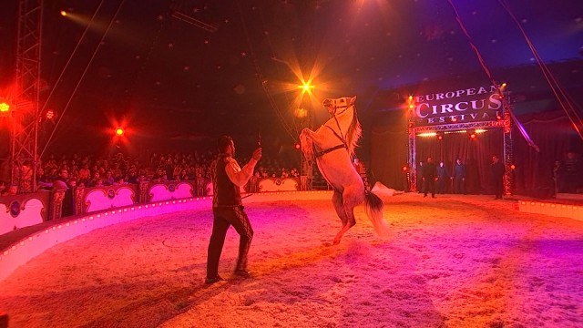 27ème Festival européen du Cirque