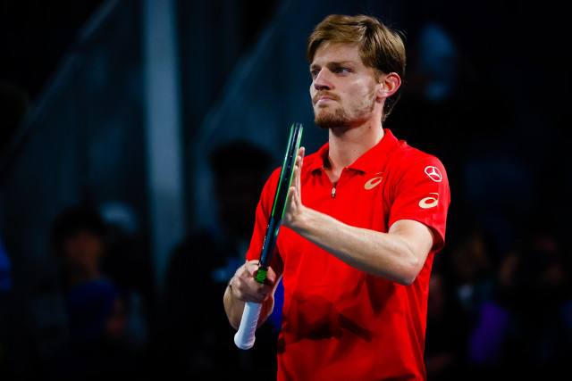 ATP Montpellier : David Goffin en demi-finale