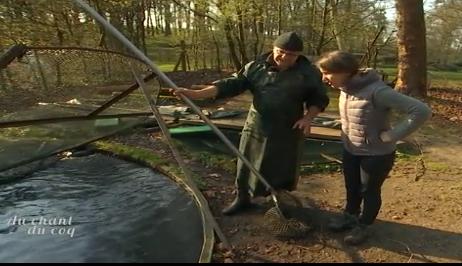 Au chant du coq: la pisciculture