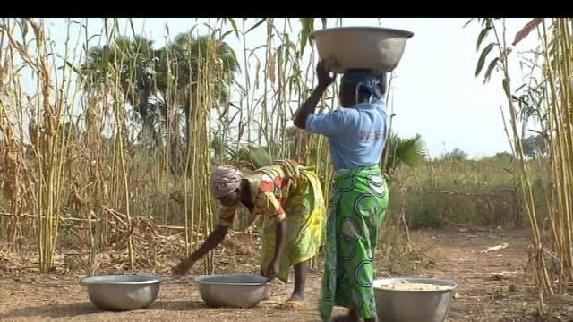 Bénin : les Iles de Paix travaillent à la formation des agriculteurs