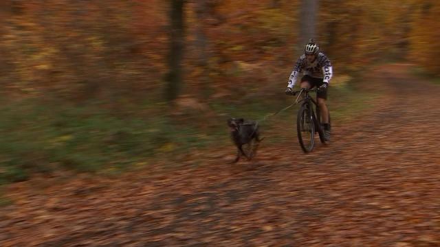 Bike-Joering : un Liégeois vice-champion du monde