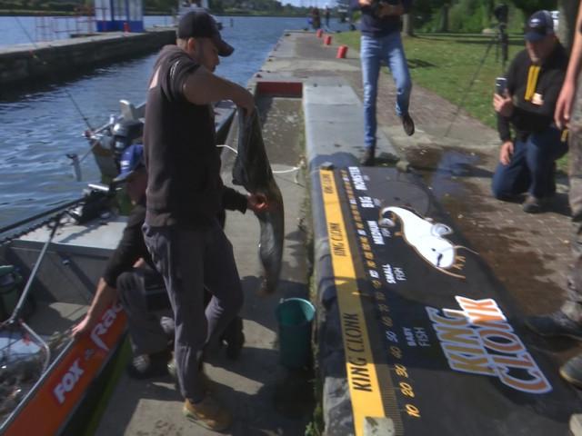 Concours de pêche au silure: cela se joue au centimètre près!