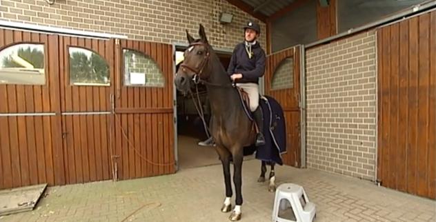 Coup dur pour  Grégory Wathelet : son cheval souffre d'une fracture