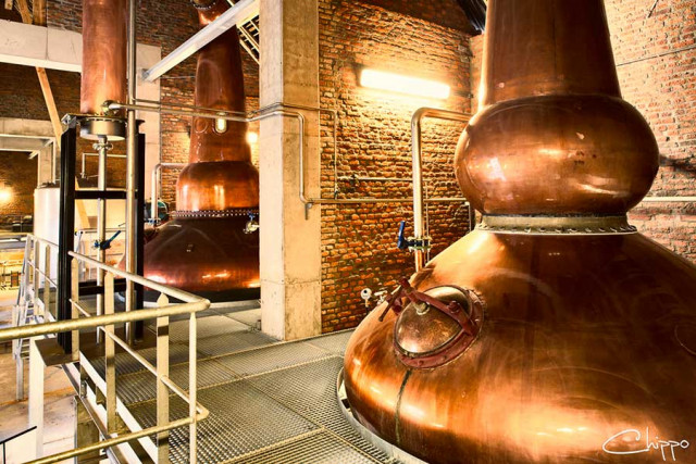 Covid19 : le whisky suspendu de la Owl Distillery