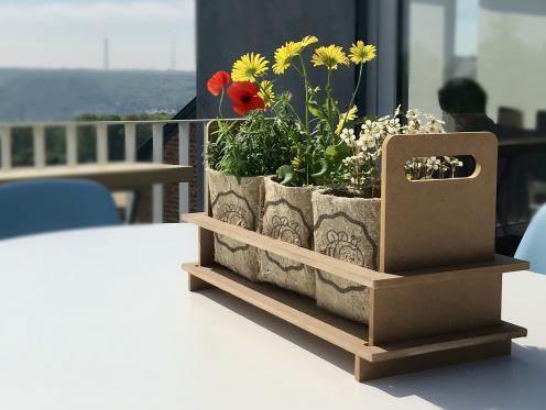 Des plantes pour sauver les abeilles