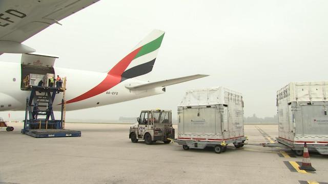 Forem et Liège Airport : des centaines d'emplois!