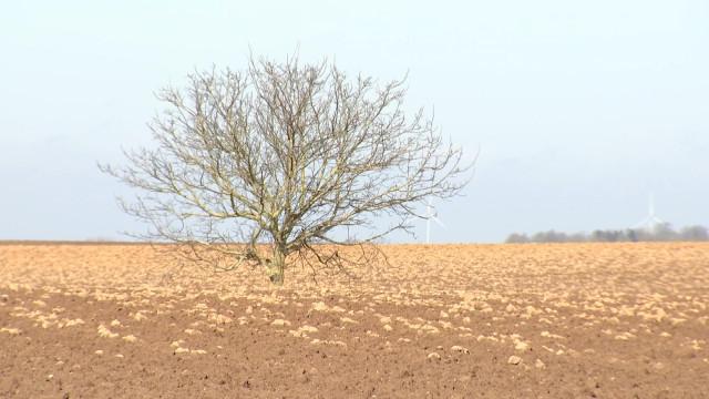 Générations Terre: comment aller vers une agriculture durable