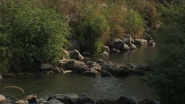Hannut veut restaurer la flore sur le bord de la Mehaigne