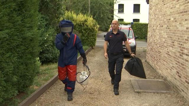 Huy : les pompiers neutralisent les nids de guêpes