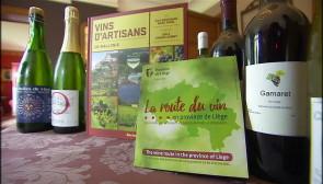 Route du vin en province de Liège: une carte répertoriant 19 artisans viticulteurs