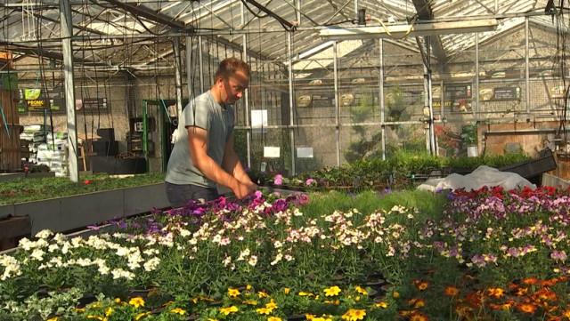 Jardinage et bricolage : réouverture à partir de ce samedi