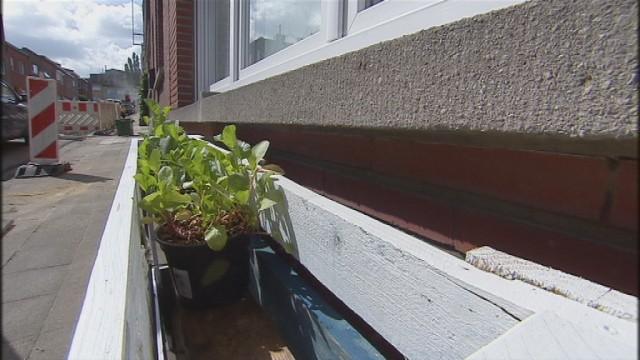 Jardiner dans les rues de Liège, c'est permis!
