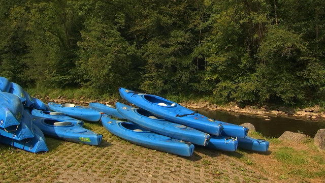 Kayak : le bilan n'est pas très gai