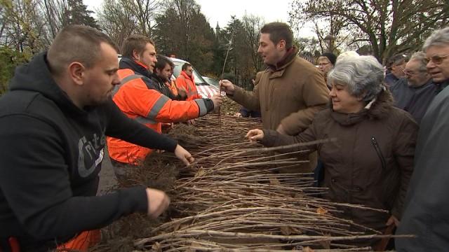 La 35 ème distribution gratuite d'arbres en Wallonie