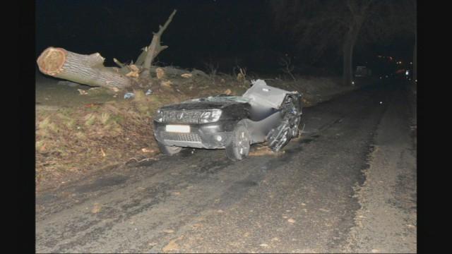 Un arbre tombe sur une voiture : deux morts à Dalhem