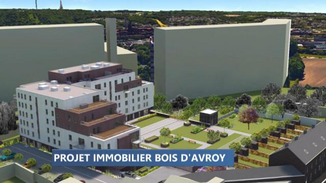 Le ministre Di Antonio casse le permis pour le projet Bois D'avoy