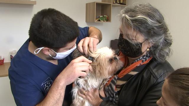 Les vétérinaires: les oubliés de la vaccination covid
