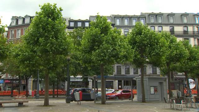 Liège veut planter 20 000 arbres d'ici 2030