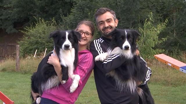 Oreye : un couple et ses chiens préparent un championnat d'agility