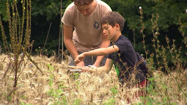 Préhistomuseum : immersion chez les premiers agriculteurs