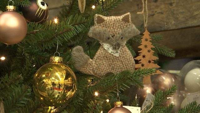 Les sapins de Noël sont déjà là !