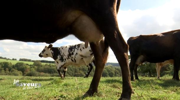 Saveurs de chez nous : la fromagerie La Faytoise