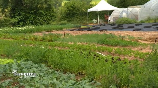 Saveurs de chez nous : Le Jardin des Sourdans