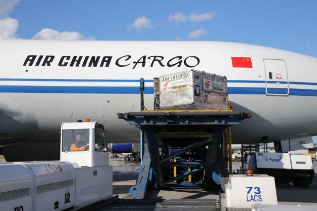 Une liaison cargo hebdomadaire entre Liège Airport et Shangaï
