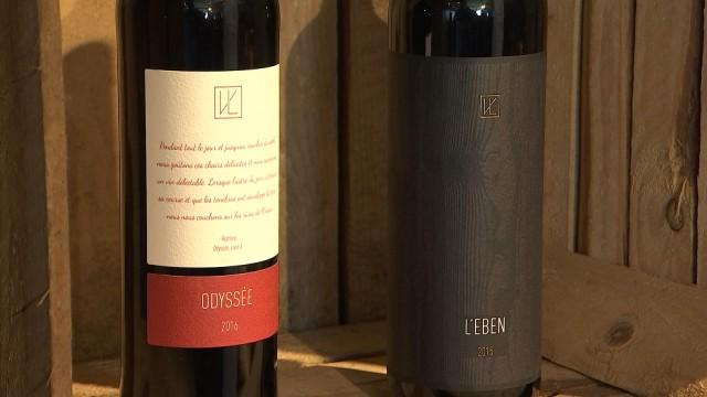 Vins de Liège : premiers vins rouges et augmentation de capital