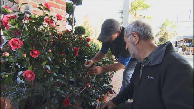Voilà le printemps : et du travail pour les jardineries